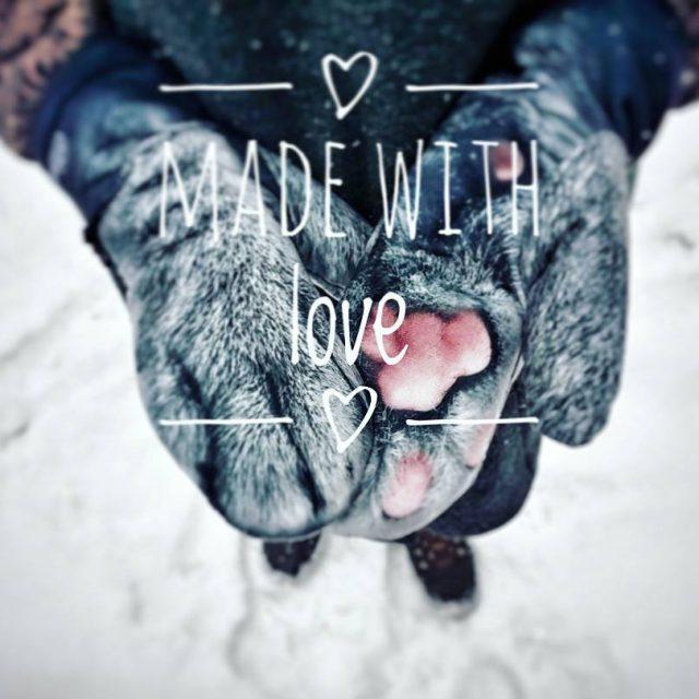 yczymy Wam duo mioci  valentines love loveisintheair walentynki mio